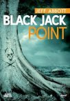 Black Jack Point - Jeff Abbott