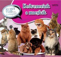 Kedvenceink a macskák - Ki mit tud... a világról?