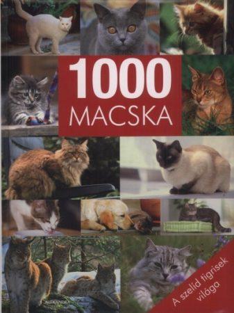 1000 macska - A szelíd tigrisek világa - antikvár